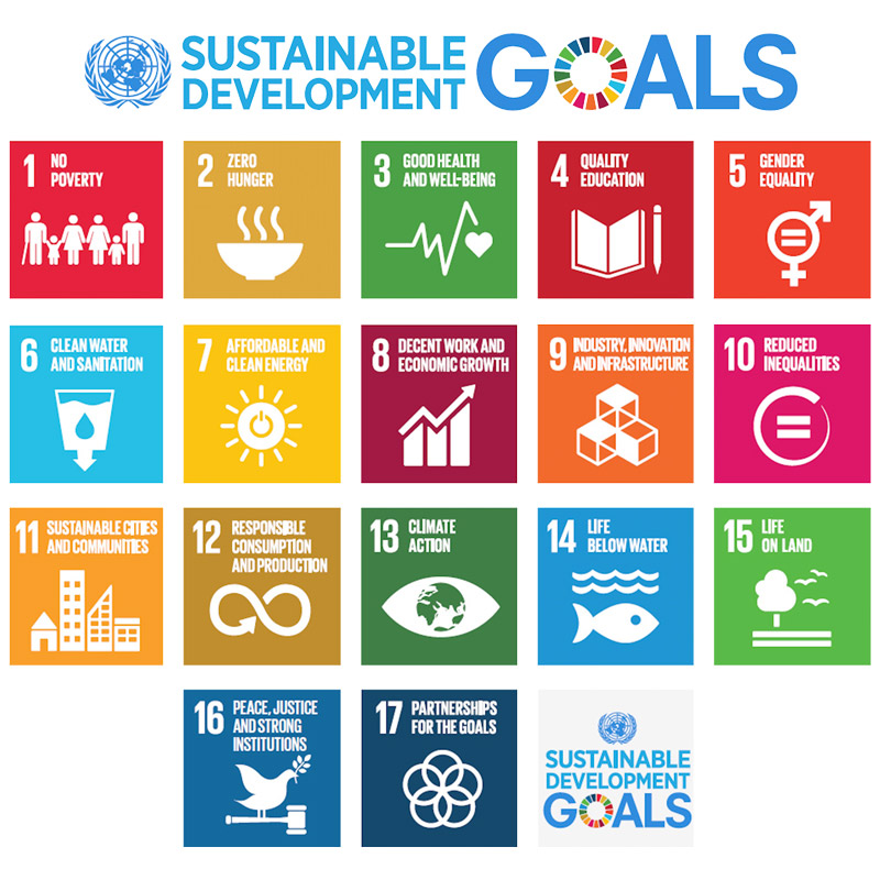 Measuring Earn & Learn's success using the United Nations Sustainable Development Goals