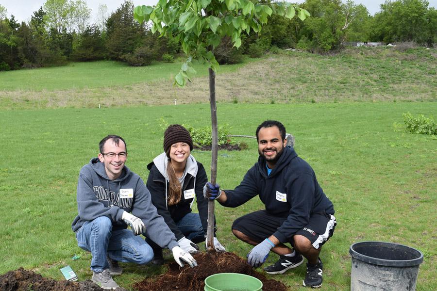 Tree Trust Sunrise Banks